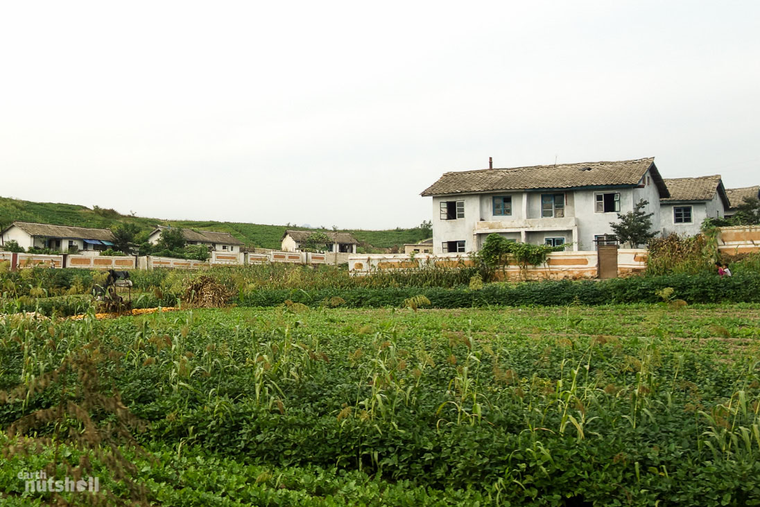 north-korea-local-housing