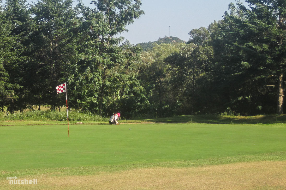 pyongyang-golf-course-maintenance