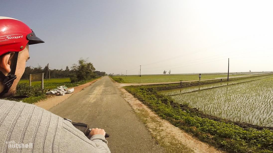vietnam-hue-ricefields