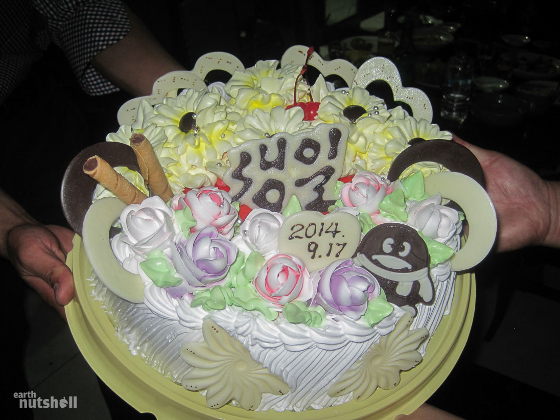 100-north-korea-birthday-cake