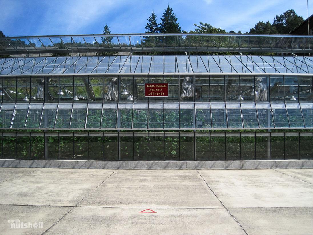 132-kimjongil-stood-greenhouse-
